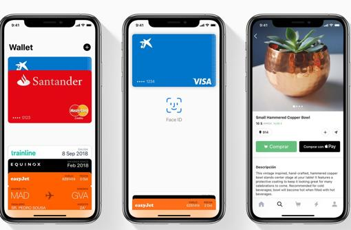 Wallet Apple Pay